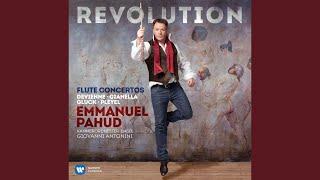 Flute Concerto No. 7 in E Minor: I. Allegro