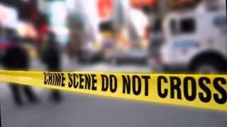 Mexican Journalist Found Shot Dead