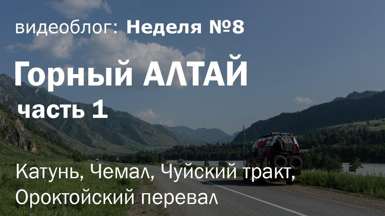Горный Алтай на Газель 4х4. Часть 1: Катунь, Чемал, Чуйский тракт, Ороктойский перевал / Неделя 8