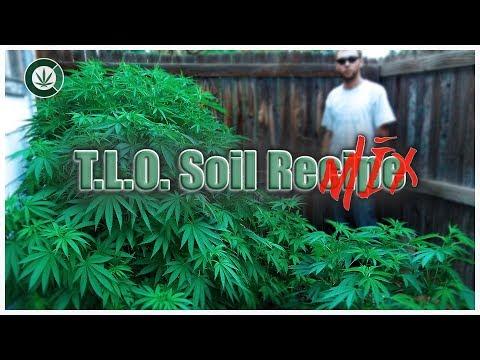 ORGANIC SOIL RECIPE (OFFICIAL TLO REMIX)