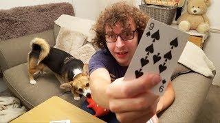 Memorise A Deck Of Cards - 1 Week Challenge - Part 2