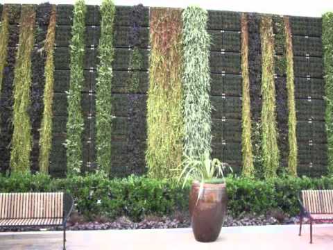 Fashion Valley Mall Living Wall, San Diego, CA