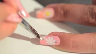 Marguerites multicolores + Concours Thumbnail