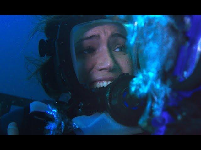 彼女たちは生還できるのか!?映画『海底47m』予告編