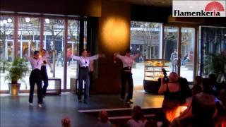 Mužský flamenkový tanec Farruca | Fiesta Flamenkeria 2011