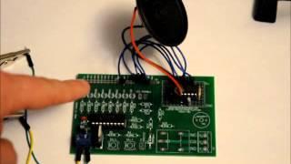 The Bugger - V.2 Prototype - Makes Sex Noises At Random - TIME FOR REVENGE!