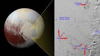 Oceans of Life Beneath Pluto