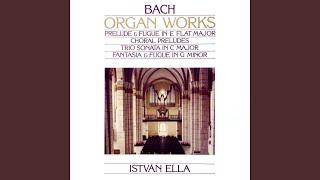 C-dúr triószonáta BWV 529: II. Largo