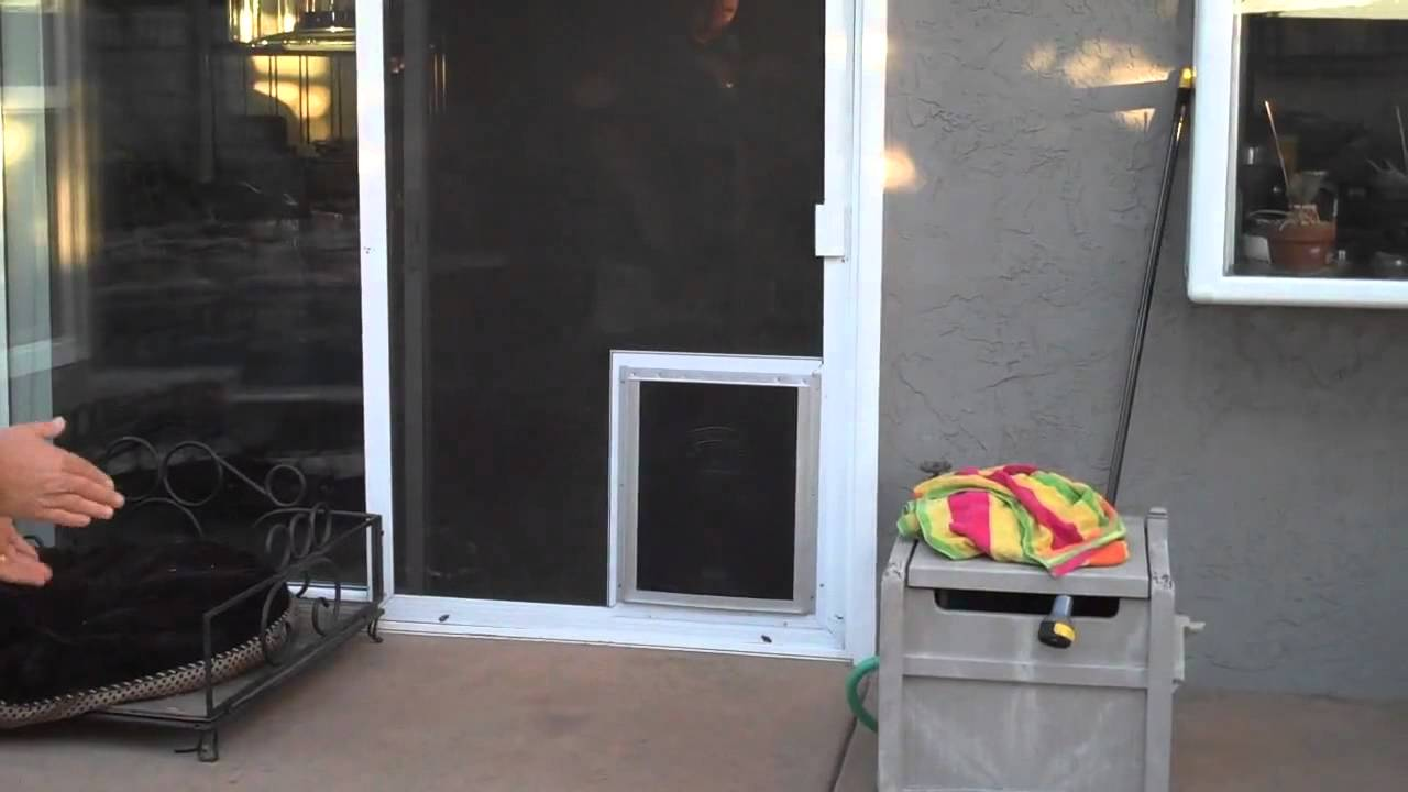 Pet Screenpet Door Rancho Penasquitos Youtube