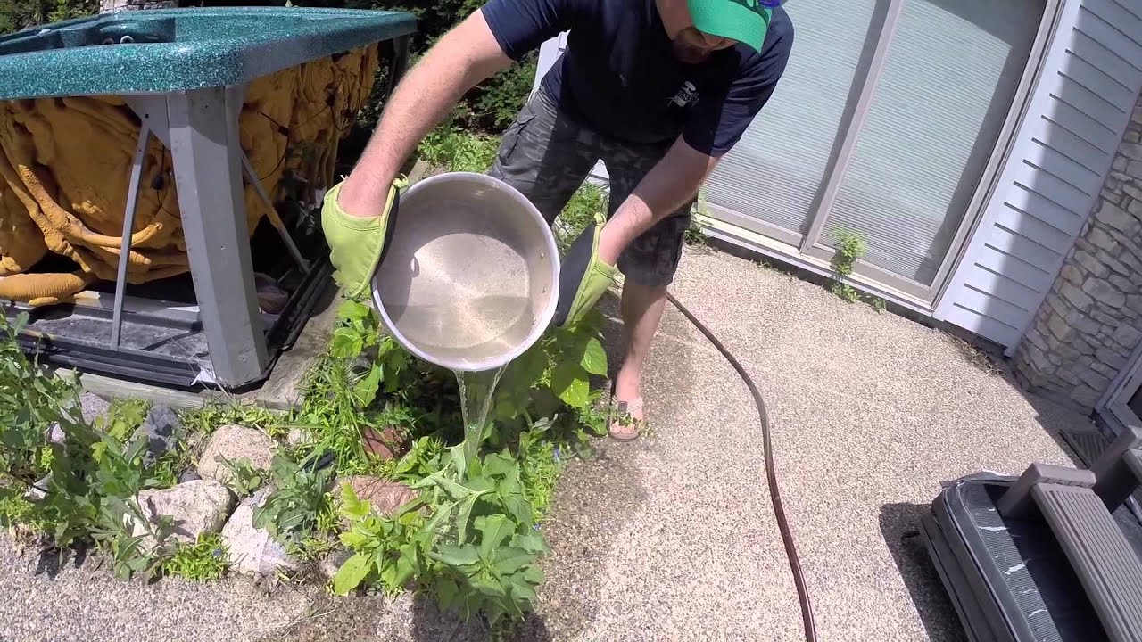 Image result for boiled water for weeds