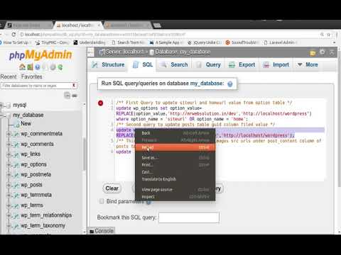 How to update all urls from database within a minute after move Wordpress site on other server