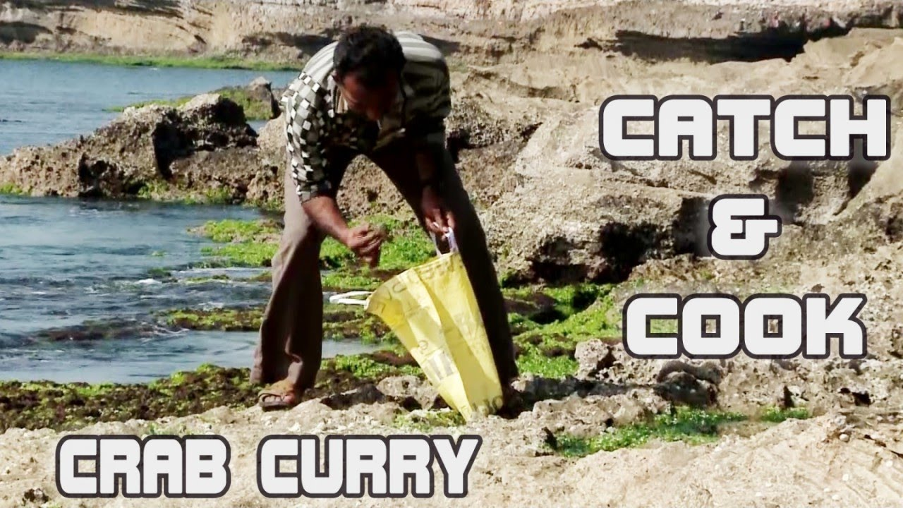 Crab catch and cook - indian village food cooking - crab curry