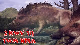 2 KWV TIJ TWM NPUAS TSIV HEEV 11/04/2019