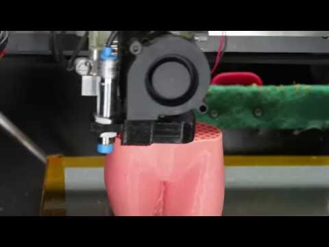 RoVa4D Full Color Blender 3D Printing the Pink Panther Woman | Time Lapse