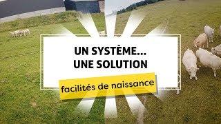 Un système...une solution - Facilités de Naissance