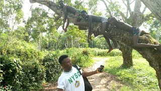 Just Caming from N.Y.S.C Corpse(Real house of comedy)(isados comedy)(Nigerian comedy)