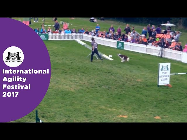 Olympia Quarter Final - G6-7 Senior Agility Part 1 | International Agility Festival 2017