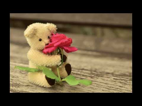 #Best Love Teddy Bear HD Images, Love Teddy Bear Wallpapers, Love Teddy Bear Pictures & Photos #10