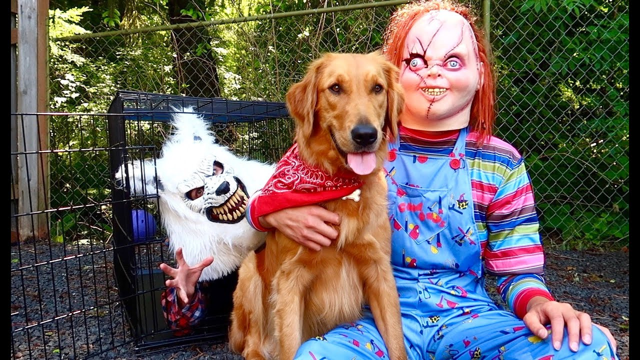 Chucky Saves Puppy From Wolf!