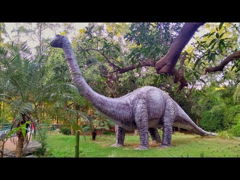 Indroda nature park Gandhinagar