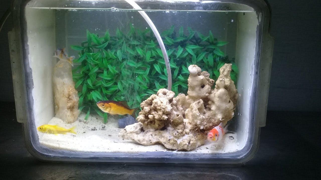 Plastik Aquarium