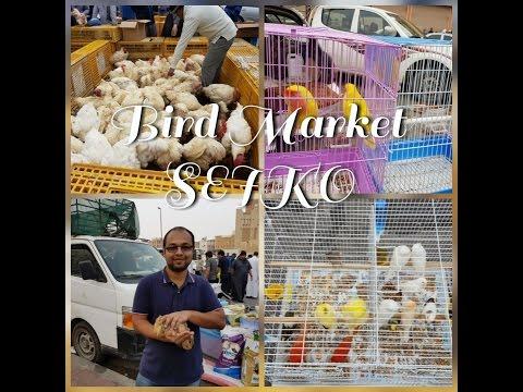 BIRD MARKET | SEIKO | CRAWFORD MARKET | SAUDI ARABIA | DAMMAM |