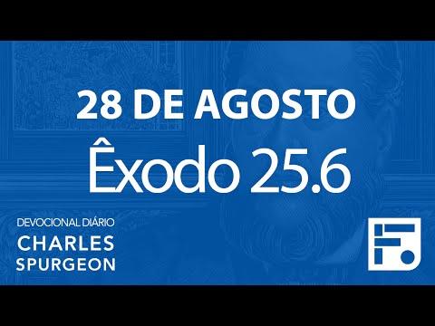 28 de agosto – Devocional Diário CHARLES SPURGEON #241