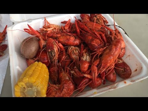Houston's Crawfish Season Begins With A Festival