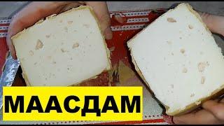 Маасдам Сыр маасдам в домашних условиях