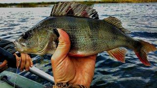 Девушка на рыбалке. Усяжские (Косинские) разливы и ловля окуня на твистер