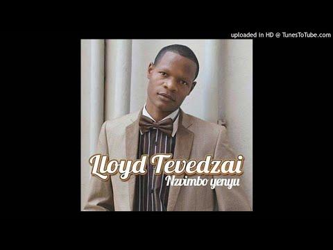 lloyd-tevedzai---inzwa-inzwi-(feat.-rumbie-zvirikuzhe)