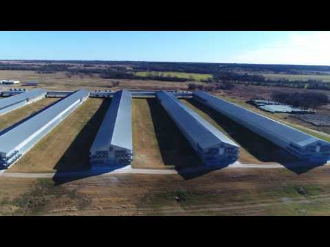 "Drones Reveal Egg Factory ""Farms"""