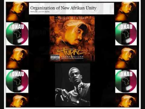 ONAU RBG Tupac National Chairman for the New Afrikan Panther Party 1989 pt 2 of 2