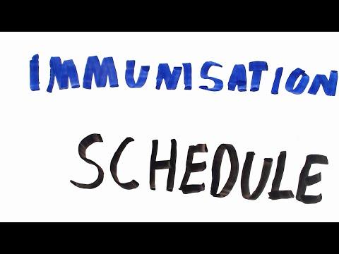 Immunisation schedule UK (OSCE)