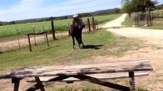Horse Breaking Fail | Cowboy Gets BUCKED!