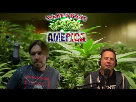 The Dude Grows Show Special Interview With GrowMau5