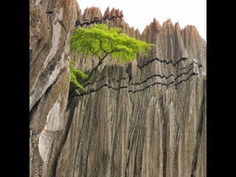 Yana Caves Karnataka