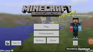 Bersenang senang dengan minecraft