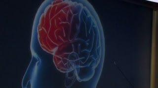 Inside the brain of a psychopath