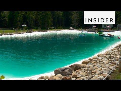 Giant Backyard Pool