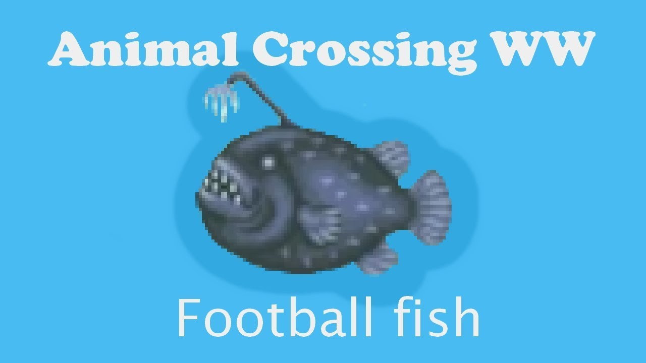 Animal Crossing WW : Catching a football fish - YouTube