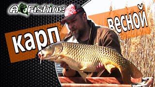 Рыбалка в холодной воде Ловля карпа весной Карпфишинг и флэт метод фидер