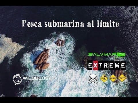 Pesca submarina al límite en Galicia (lubina 5.5 kg al vuelo)