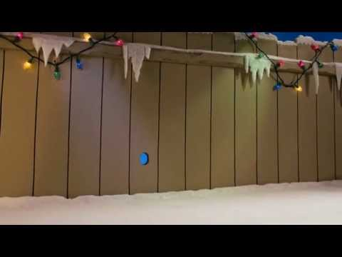 Mutts Stop-motion Film