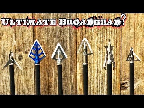 INSANE! Hunting Broadheads Vs 50 Gallon Steel Drum!