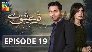 Tu Ishq Hai Episode #19 HUM TV Drama 30 January 2019