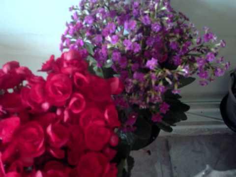 flores da