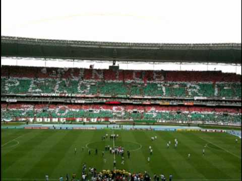 Torcida do Fluminense - Canta joão de Deus