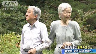 上皇后さま早期の乳がん 来月以降に手術へ(19/08/10)