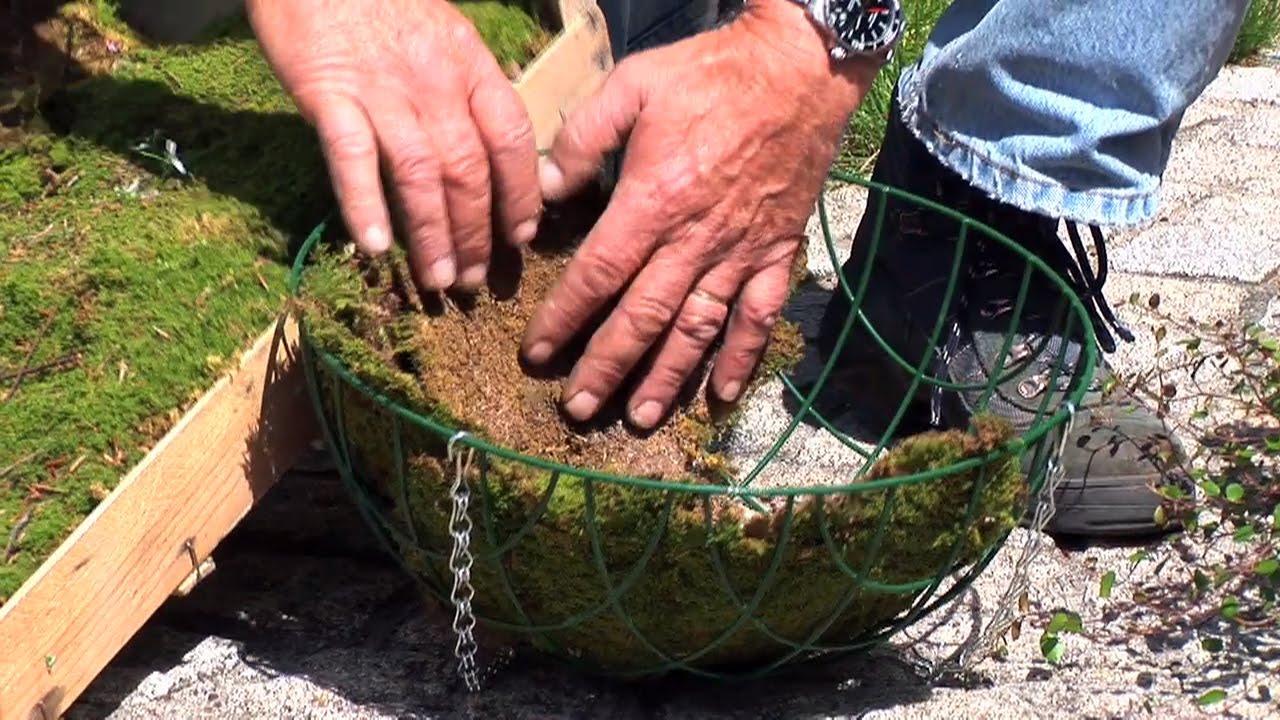 hanging baskets bepflanzen - bepflanzungsideen, sortiment, düngung, Garten Ideen